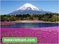 Top 5 điều số 1 của Nhật Bản - Bạn đã biết hay chưa?